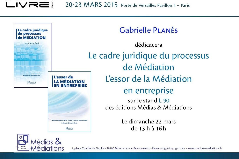 Médiation familiale à Lyon et responsabilité des parents